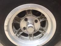 Puma Wheel