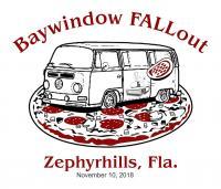 Southeastern Baywindow Rally FALLout