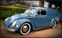 Bug panel van