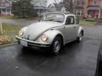 Snow on Bug
