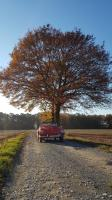 My 56th lowlight...todays drive