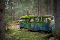 Moss covered split Bus sitting in a forest in Norway