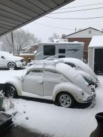 VW's in the snow