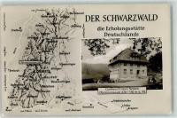 Obersimonswald Split Beetle