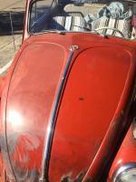 1960 Vert Rust Free