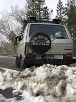Dog in van and snow