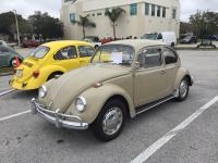 Quaker Steak VW Show 01.20.2019 St. Petersburg / Clearwater FL