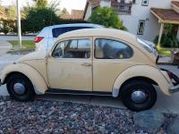 1969 vw bug & motor