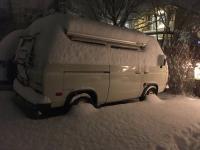 Snow February 2019
