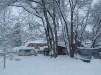 Backyard Westy