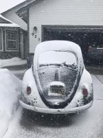 1964 Beetle in snow