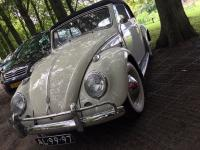 1960 Vert