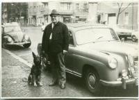 Dog, Mercedes and Beetle in Berlin