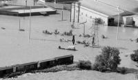 FLOOD DRY BUS