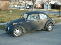 My bug!
