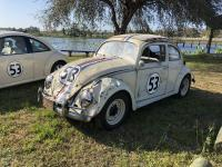 Love Bug 50th