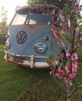 Evening Springtime Drive