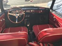65 convertible ghia out of hibernation
