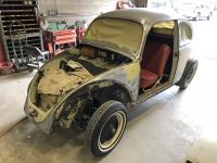1964 Beetle