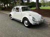 1965 bug