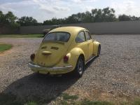 71 Std Beetle