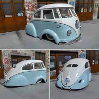 Bug/Bus