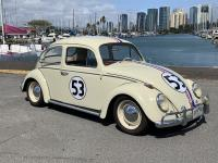 Herbie from Hawaii