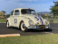 Herbie from Hawaii