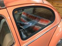 1965 type 1 drug rug