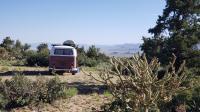 Bonnibel - Trippin' back to California