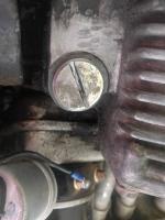 Oil Pressure Relief Plug