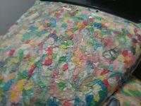 Bubble Gum Bug