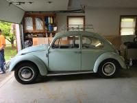 '66 Beetle / Barn Find