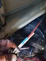 Inertia switch