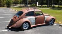 Super beetle found online