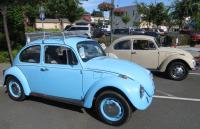 "Bugs at ""Camp & Shine"" Lakeport, CA, June 15th 2019"
