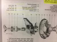 Rear bearings