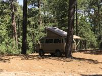 85 westy in forest