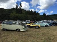 Bugs, Bikes, and Imports - Coos Bay, OR, 2018