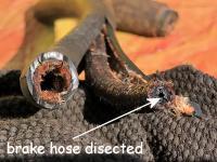 Brake hose cross section