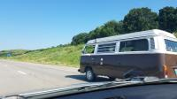 Spotted Champagne Edition Westy
