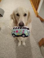 Zane with toy