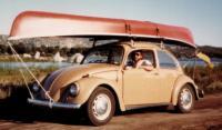 My old 67 bug