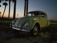 1962 Beryl Green Bug