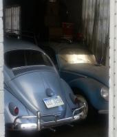 49 and 59 beetles 63 23 window