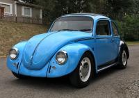 74 bug