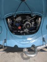 VW trans