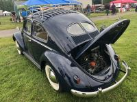 Litchfield Bug IN 23