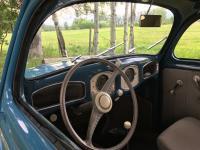 1951 azur blue split