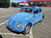 57 Bug finally coming out of storage